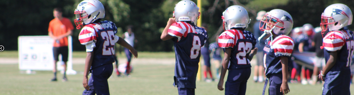 2016 Yorktown Patriots Youth Football & Cheering (PYFCO)